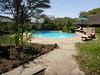 Tortilis_Amboseli__0019