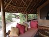 Tortilis_Amboseli__0009