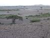 Tortilis_Camp_Amboseli_Elewana__0027