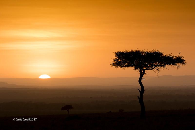 Sunset Sundowner