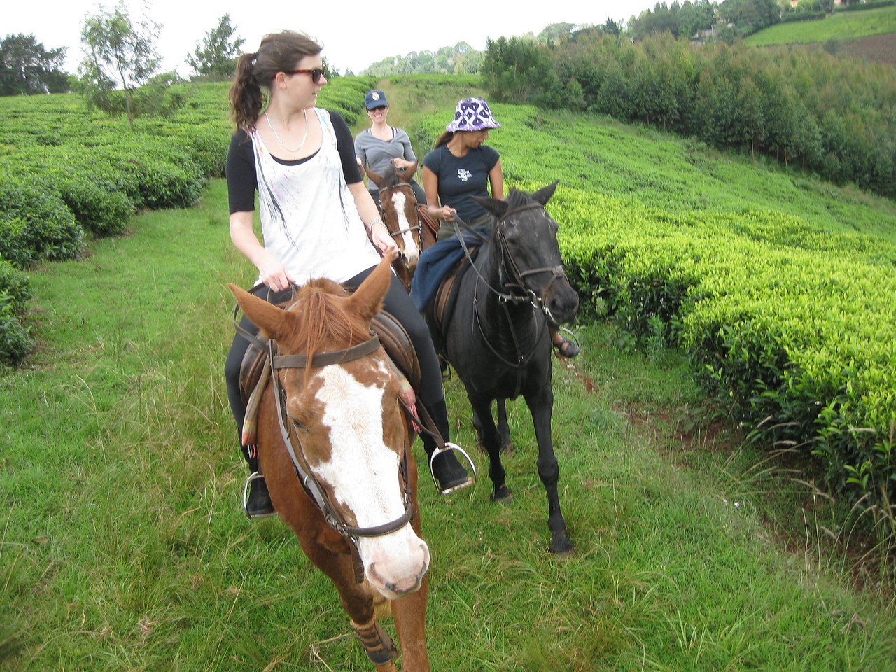 Horse back riding in Limuru with Emily