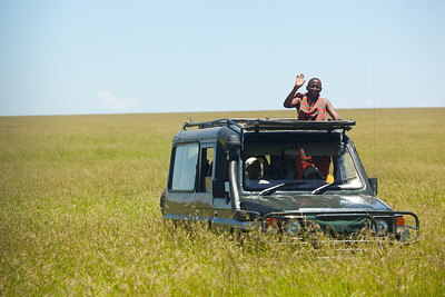 With all the rain the grasses in the Mara were high