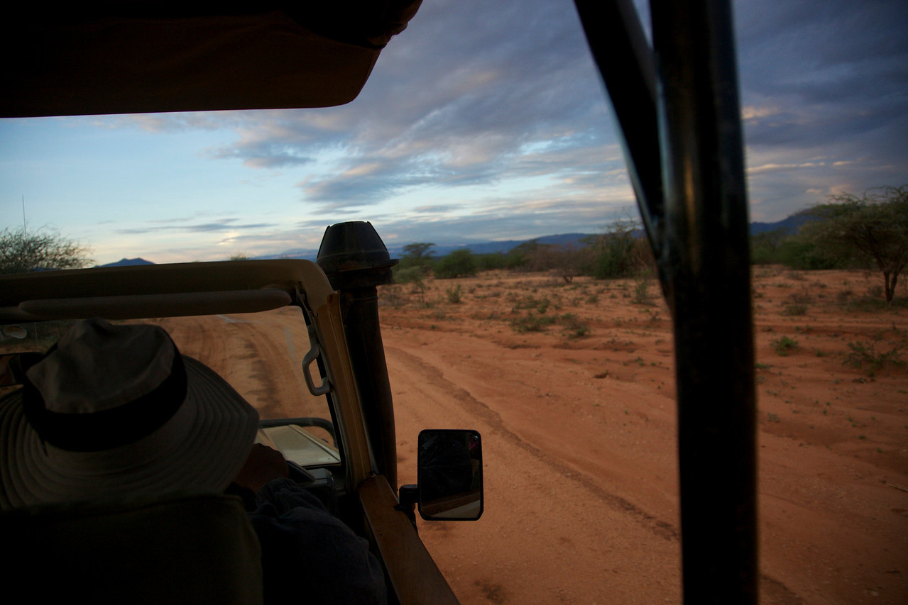 Early morning game drive.