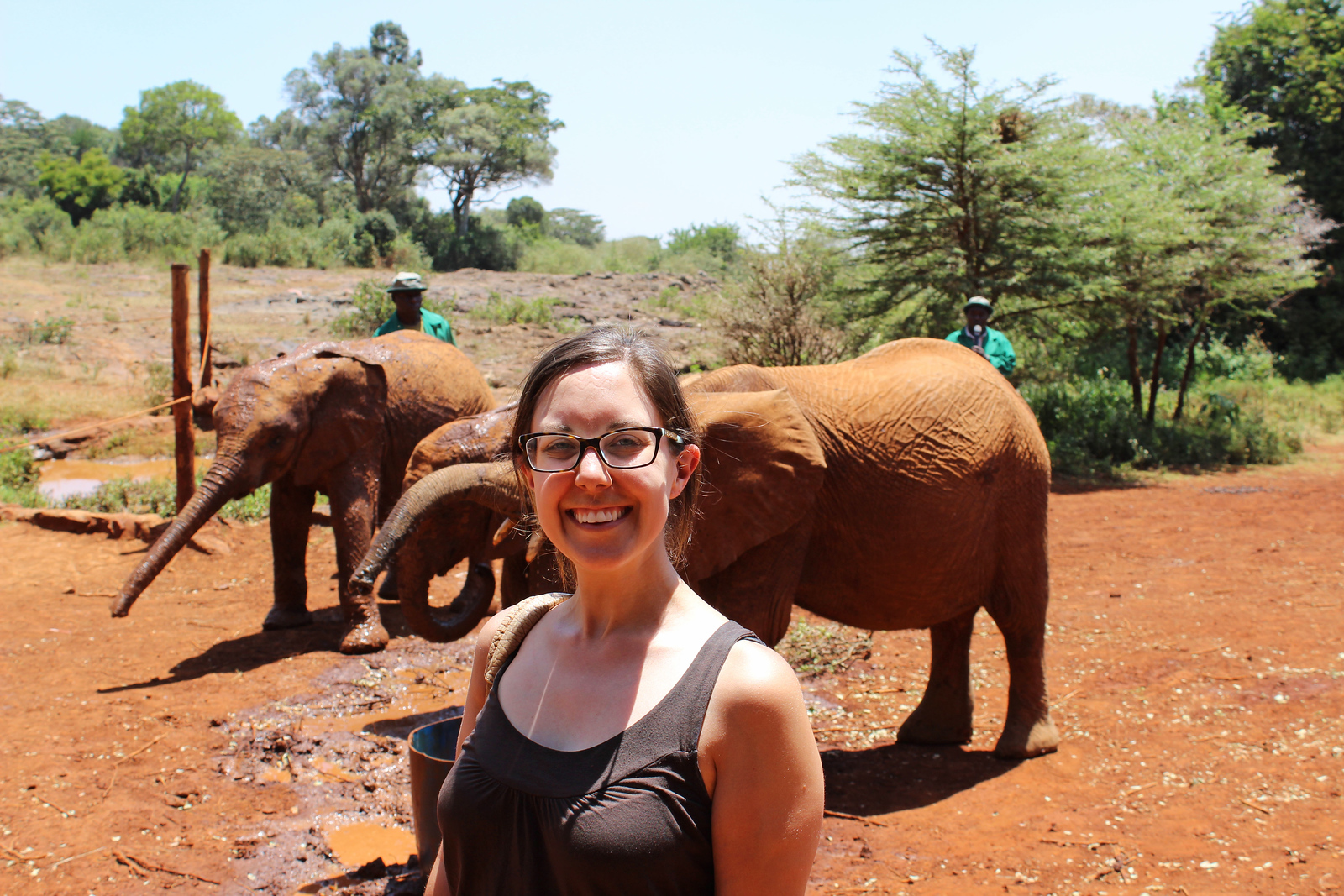 Visiting the Elephant Orphanage Nairobi, Kenya