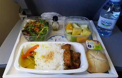 Vegan Meal on KLM