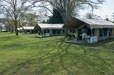 Camp at Nakuru