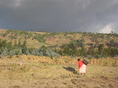 Kenya: Ndabibi Water