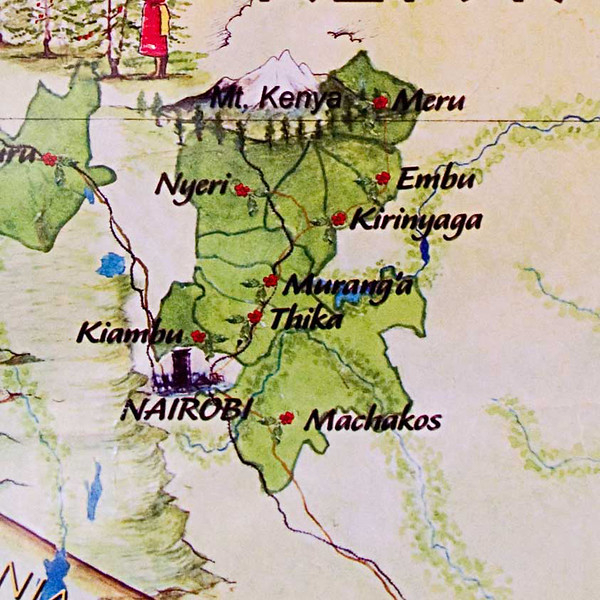 The great coffees grow in stream-fed hills gently rising from the 4,500 foot central Kenya plain.  The area extends from Nairobi, in the south, along the eastern edge of the Aberdare mountains to the southern slopes of Mt. Kenya.  Nairobi is about 75 miles south of Mt. Kenya. The coffee quality-producing districts are: Kiambu, Thika, Murang'a, Nyeri and Kirinyaga.
