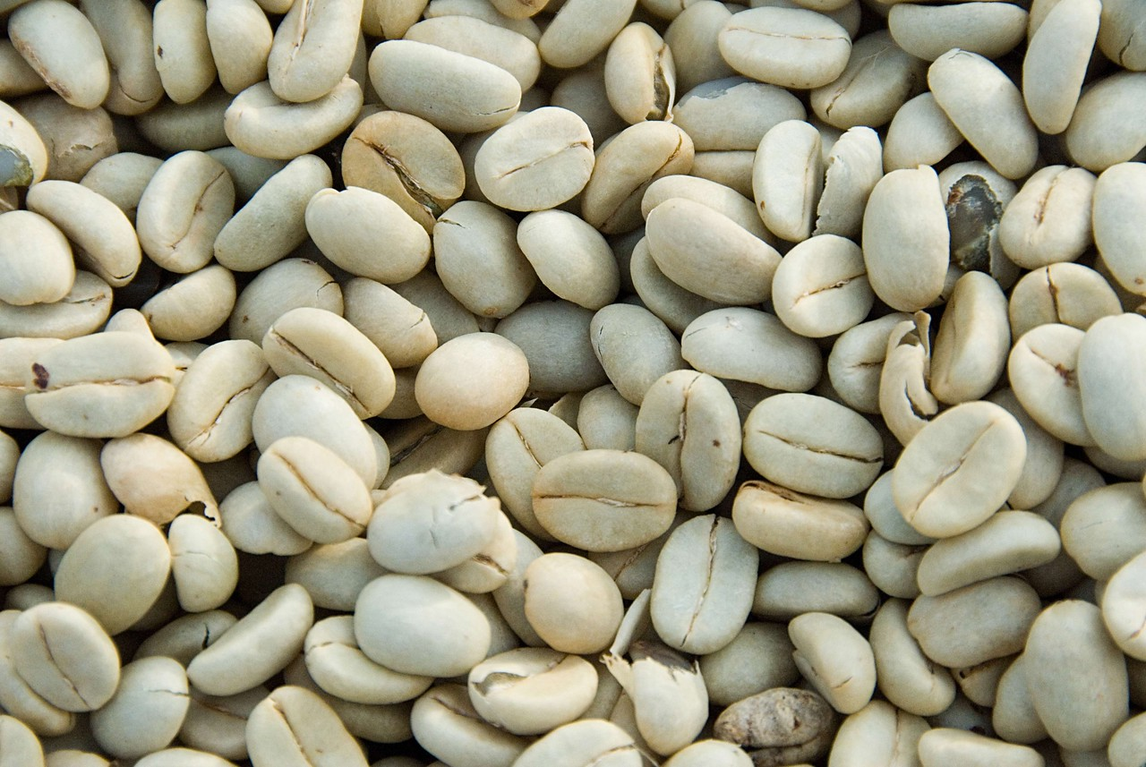 Coffee still has skin, called parchment, which protects it.  As the beans inside dry, they shrink, leaving the skins loosely covering the beans and easily removable when the time comes.  In the meanwhile the beans are well protected by the parchment.