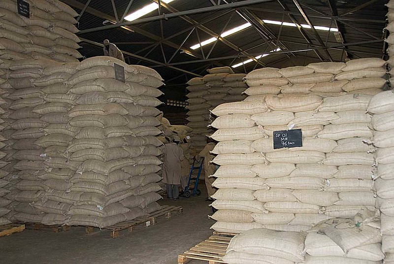C Dorman warehouse & mill.  Each bag of green coffee weighs 132 lbs.. These are coffees from the fly crop, harvested this summer.  The main crop is harvested in November-December and produces the qualities that have made Kenya famous among coffee connoisseurs.