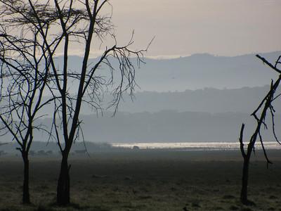 Lake Nakuru Kenya May 2008
