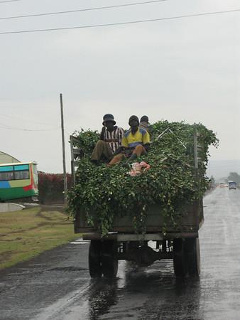 Ndabibi Kenya september 2008