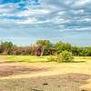 A circular Maasai krall, Kenya