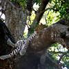 024 Samburu