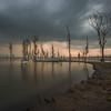 Naivasha lake 2 / Kenya