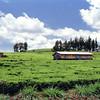 025 to Lake Naivasha