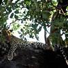 028 Samburu