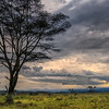 Game drive at Lake Nakuru