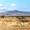013 Masai Mara