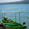 Birds of Lake Nakuru