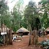 018 Bomas of Kenya