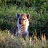 037 Masai Mara