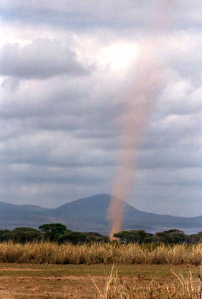 007 Amboseli