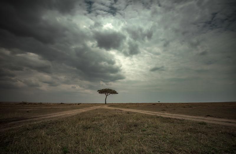 Masai landscape color