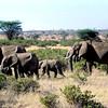 027 Samburu