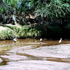 030 Samburu