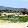 019 Samburu