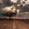 Masaai road