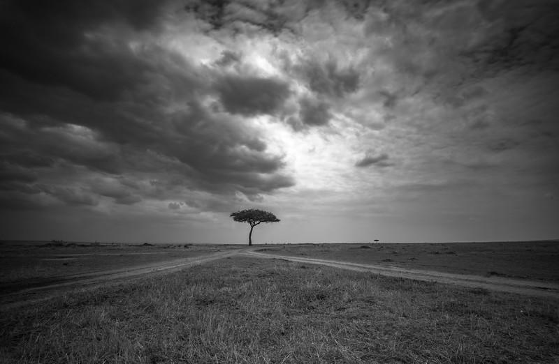 Masai landscape BW