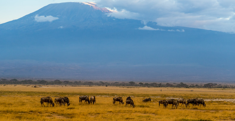 at the skirts of Kilimanjaro mountains