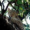 025 Samburu