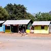 031 Amboseli