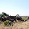 031 Samburu
