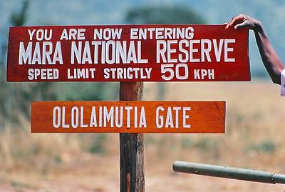 Wildlife In and Around Maasai Mara
