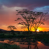 Tanzania-13921-2