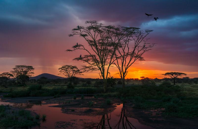 Tanzania-13957-2