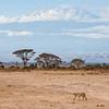 Kenya07-2146
