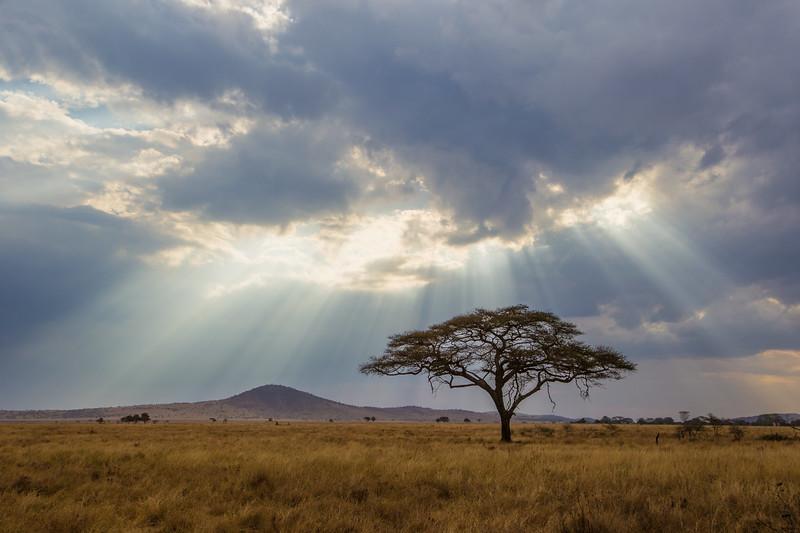 Tanzania-10834-2-HDR