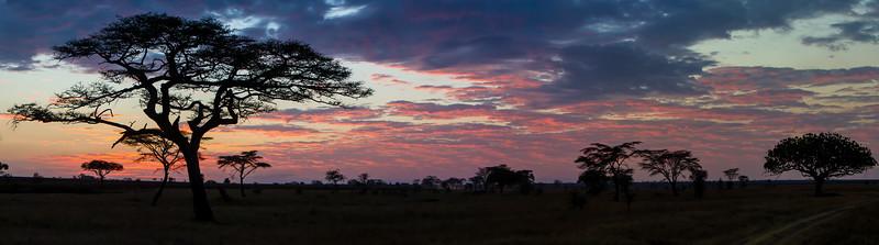Tanzania-13571-2Pano