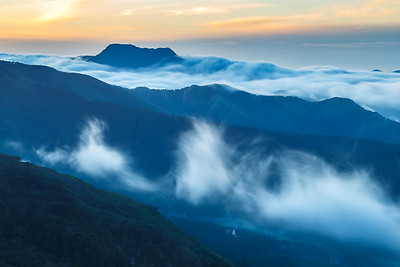 Fog in the Nilgiris