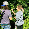 Roger Schneider | The Goshen News<br /> <br /> Alex Graham shows William Sommers one of the apples she picked Saturday at Kercher's Sunrise Orchard and Farm Market in Goshen. Graham and Sommers are from Elkhart.