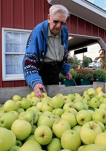 Roger Schneider | The Goshen News Jacob Flisher of Goshen selects some apples at Kercher's Sunrise Orchard and Farm Market's Fall Harvest Festival Saturday.
