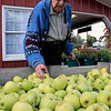 Roger Schneider | The Goshen News<br /> Jacob Flisher of Goshen selects some apples at Kercher's Sunrise Orchard and Farm Market's Fall Harvest Festival Saturday.