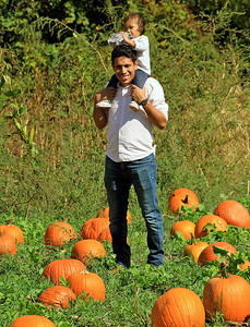 Roger Schneider | The Goshen News Daniel Montiel of Goshen holds his daughter Julissa, 1, on his shoulders while he walks through the pumpkin patch Saturday at Kercher's Sunrise Orchard and Farm Market in Goshen.