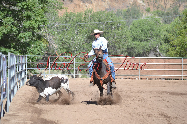 Kernville Mule and Donkey Days 2014