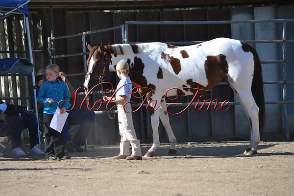 Kernville Horse Show